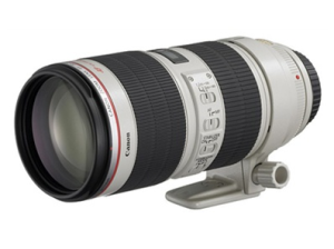 An L series lens, with image stabilization, an ultrasonic focusing motor.  This is the updated version, or version II of this lens.
